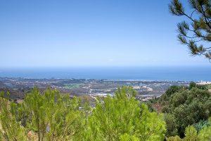 Dayhab in Marbella